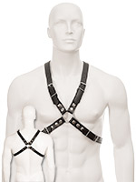 Black Leather Basic Harness