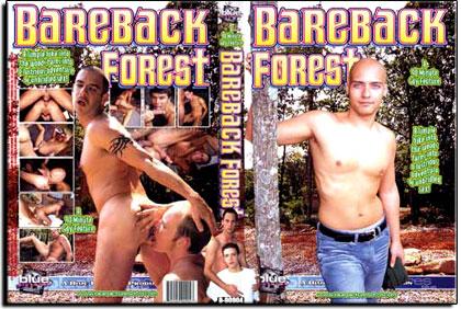 Bareback Forest