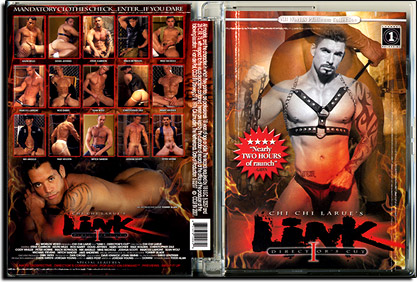 Link - The Director's Cut 2007 Nr. 01